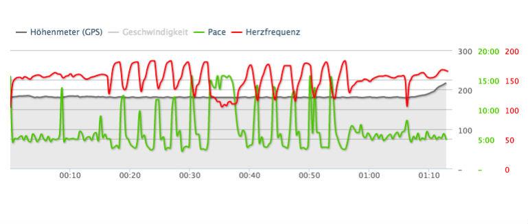 Runtastic Screenshots Herzfrequenz mit Polar H7, Grafik